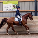 Dressage in the Winter