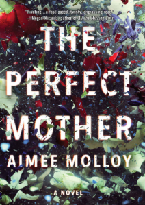 The Perfect Mother – A Novel by Aimee Molloy eBook Free Download PDF