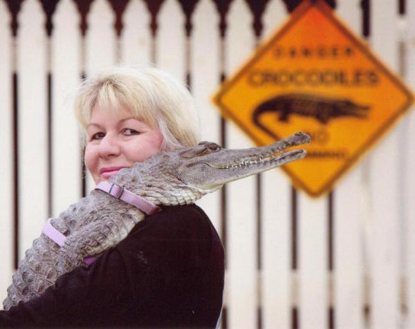 krokodeilaki1