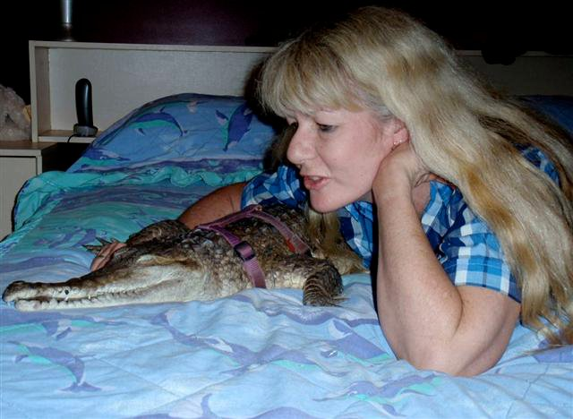 krokodeilaki8