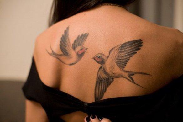 amazing-awesome-beautiful-bird-birds-Favim.com-169978_large