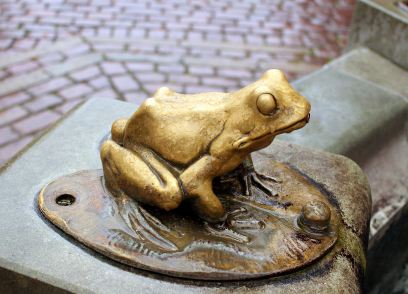 Golden frogs of Torun