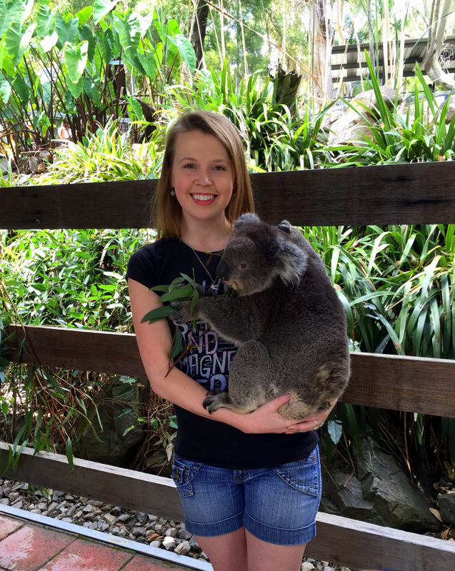 Holding a koala at Gorge Wildlife Park
