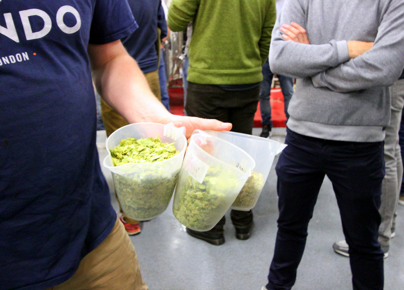 Hops used at UBREW