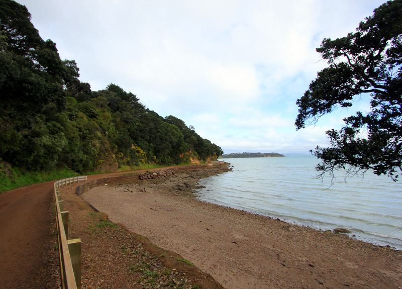 Cycling on Waiheke