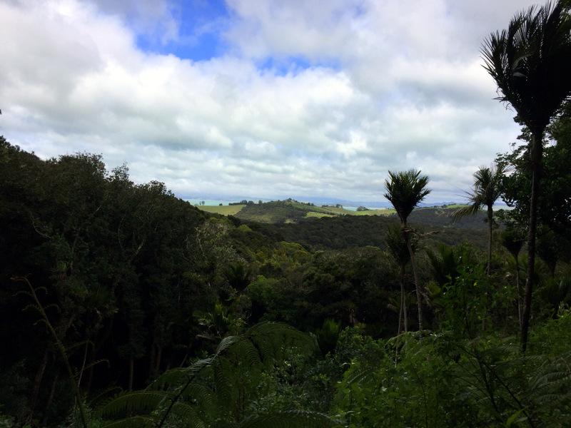 Tarata Track, Whakanewha Regional Park
