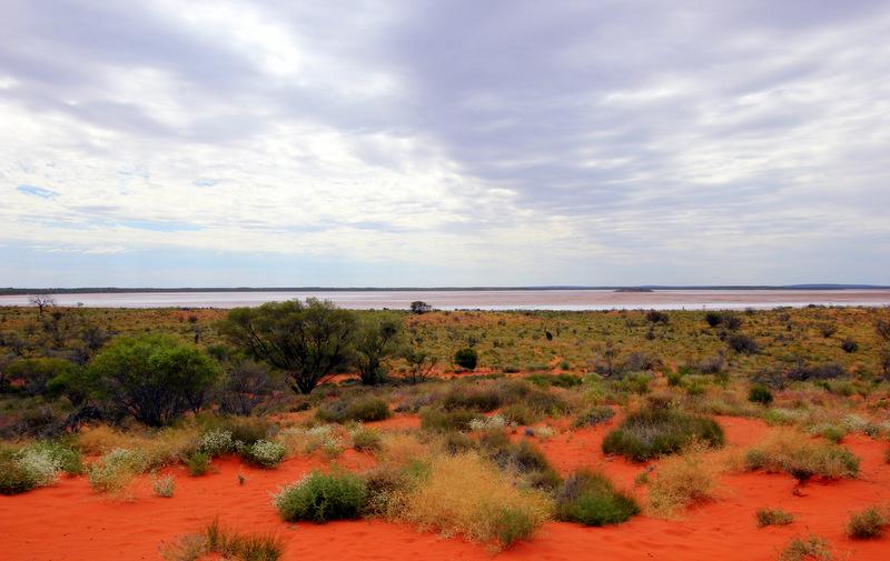 Salt flat in the Australian Outback