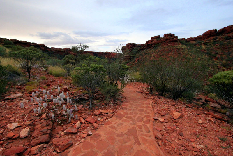 Path to Kings Canyon