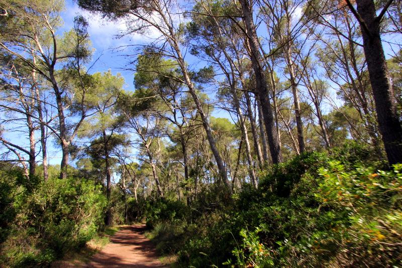 Walking trails in Menorca