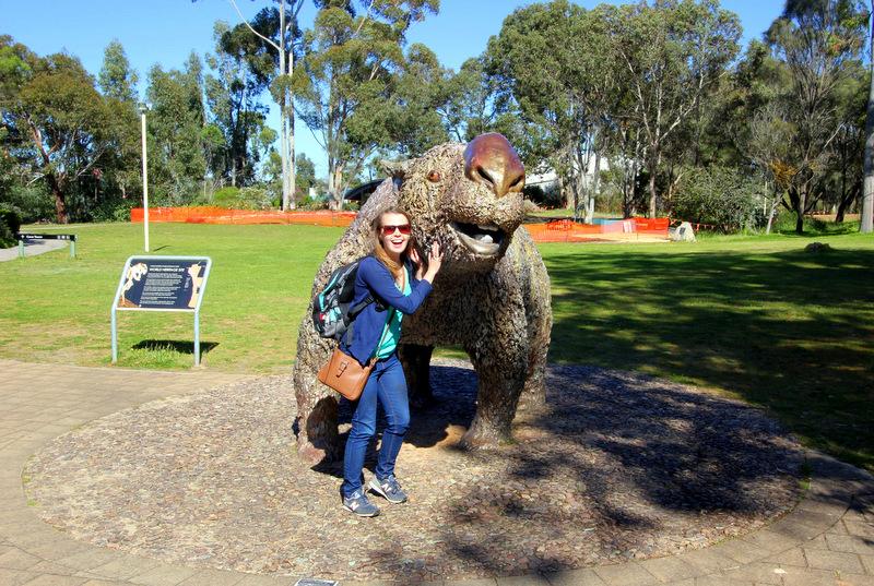 Giant wombat, Naracoorte Caves