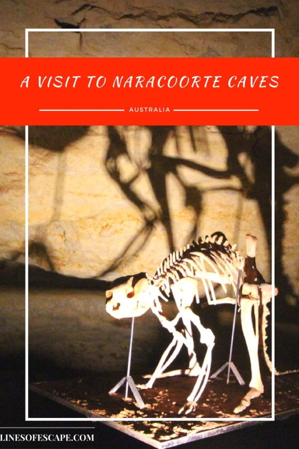 Naracoorte Caves, South Australia