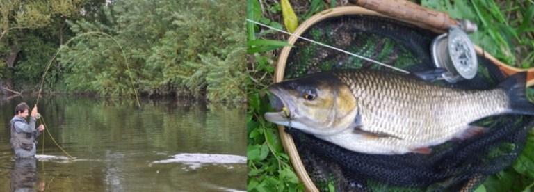 AT_June_16_fishing_season - 1