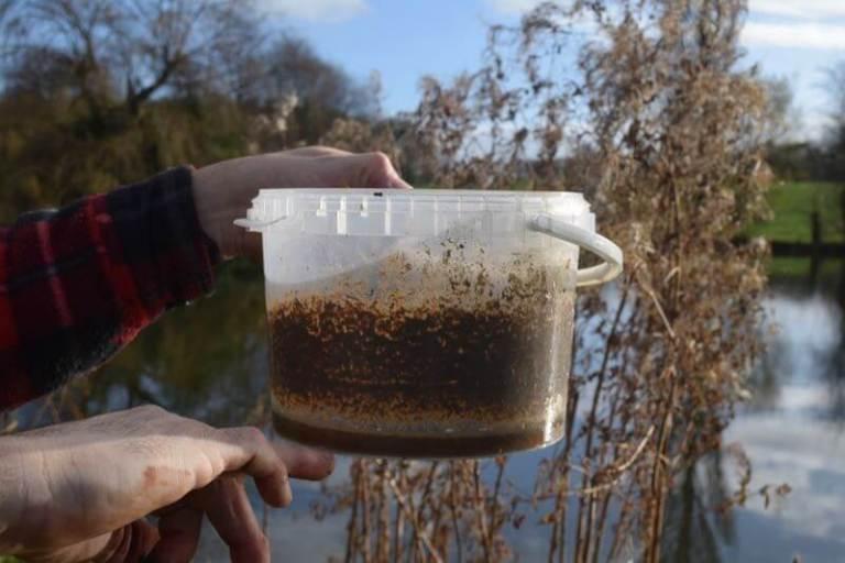 Siltex fishery treatment anti silt chemical