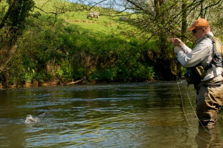 Small Stream fly fishing wellow brook close season