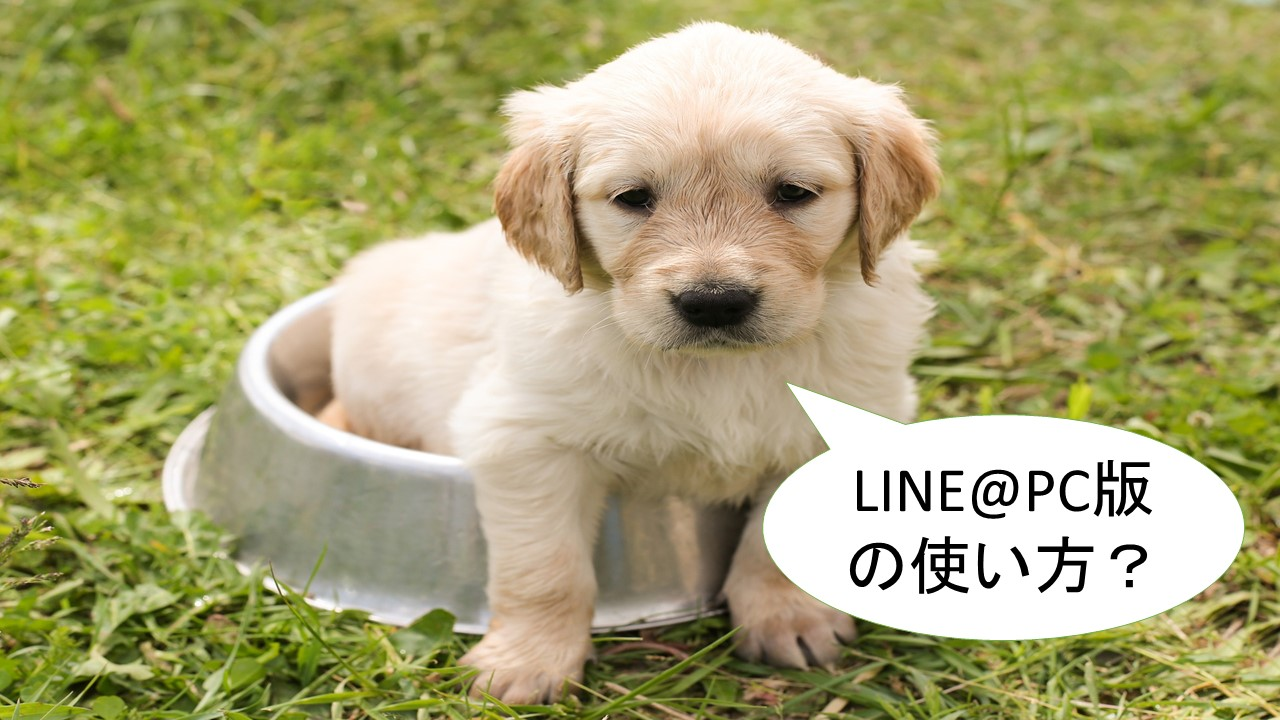 LINE@PC版の使い方