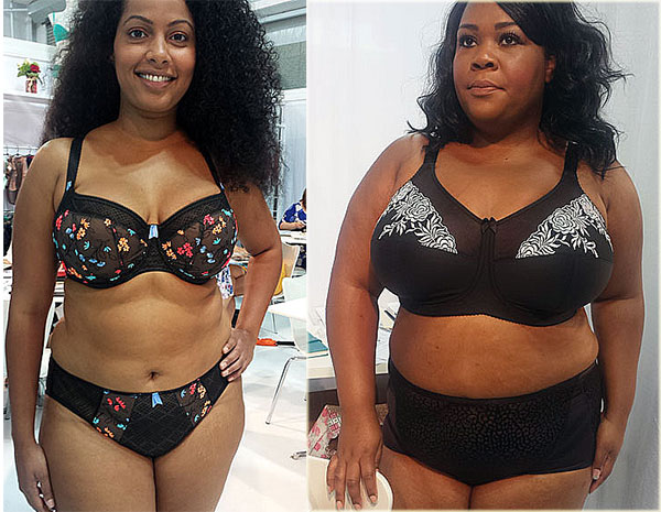 elomi-and-elila on Lngerie Briefs