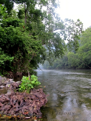 The Shenandoah River begins to fill with springtime's rain.