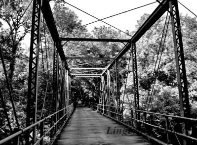 BnW Bridges(w)#(12)
