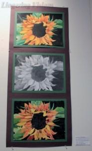 Watercolor pencil; grade 10