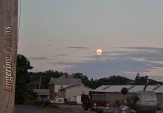 Super Birthday Moon