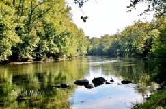 Shenandoah River(w)