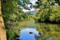 Green River(w)# (2)