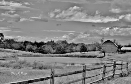 Fences in Black and White(e)# (1)