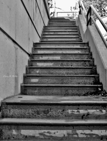 Steps and Stairways# (1)