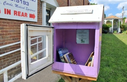 We have these little libraries in our own little town. We have other things too, donated, created, encouraged by people, our neighbors, who make the effort to improve the world.