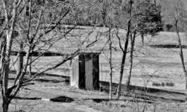 Local Outhouses in Black and White# (4)