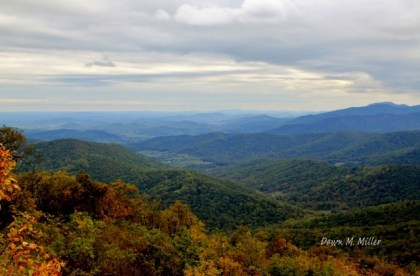 the-hills-of-shenandoah-national-park-3