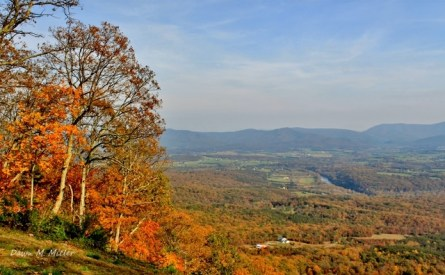 overlook-in-the-george-washington-national-forest