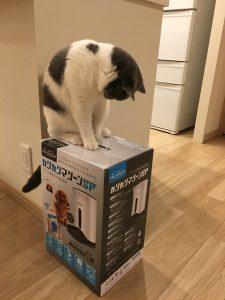 猫とカリカリマシーン