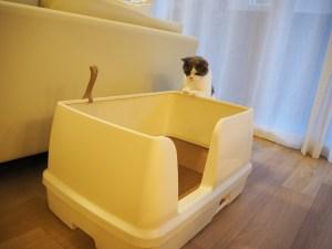デオトイレ快適ワイド