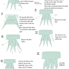 Origami Angel Step By Diagram The Lung Anatomy Label Jellyfish