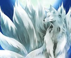 nine-tail-fox-8