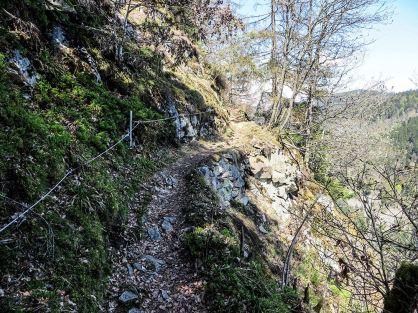 Abschnitt auf dem Terrainkurweges 5