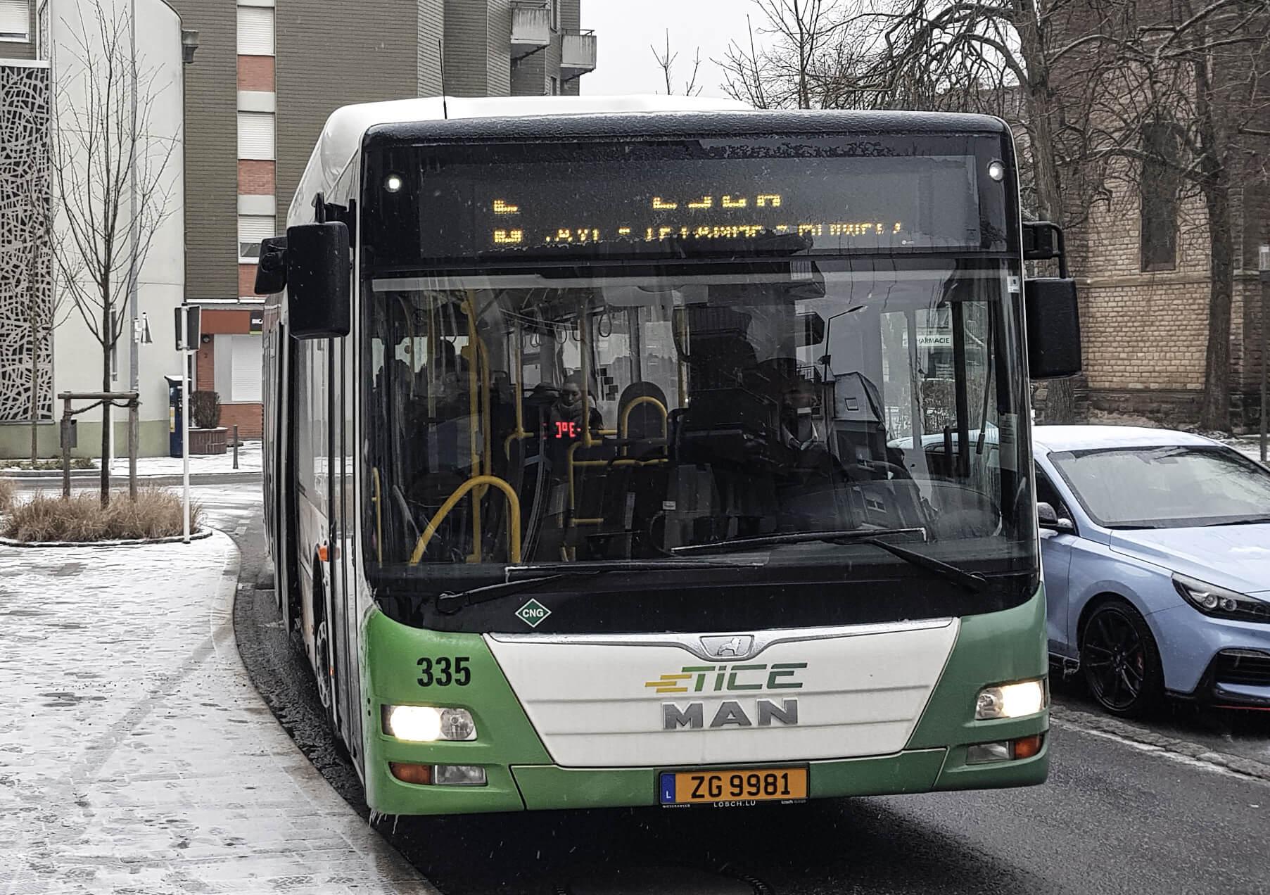 Der Bus der Linie 5.