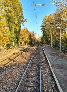 Die Linie 5 fährt auch durch Hessen.