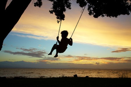 Young Boy on Rope Swing under Pohutukawa Tree at Sunset, Thames, Coromandel, North Island, New Zealand