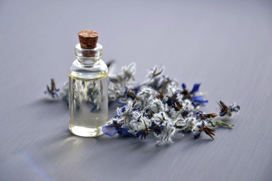 Lini Skinfood cosmetic oil, natural cosmetic, borago officinalis