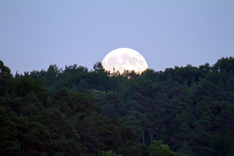 full moon, evening sky, moonlight
