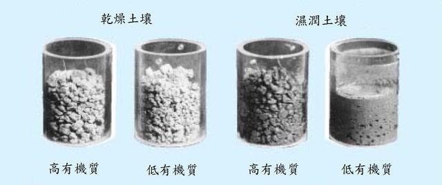 ( 液肥 )液態有機質肥料的優缺點(三)@有機肥料 PChome 個人新聞臺