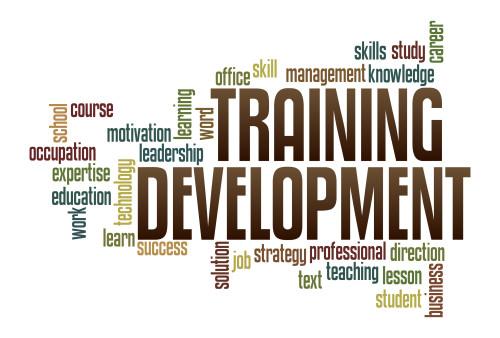Employee Development: Who Should Take Responsibility ...  Employee Develo...