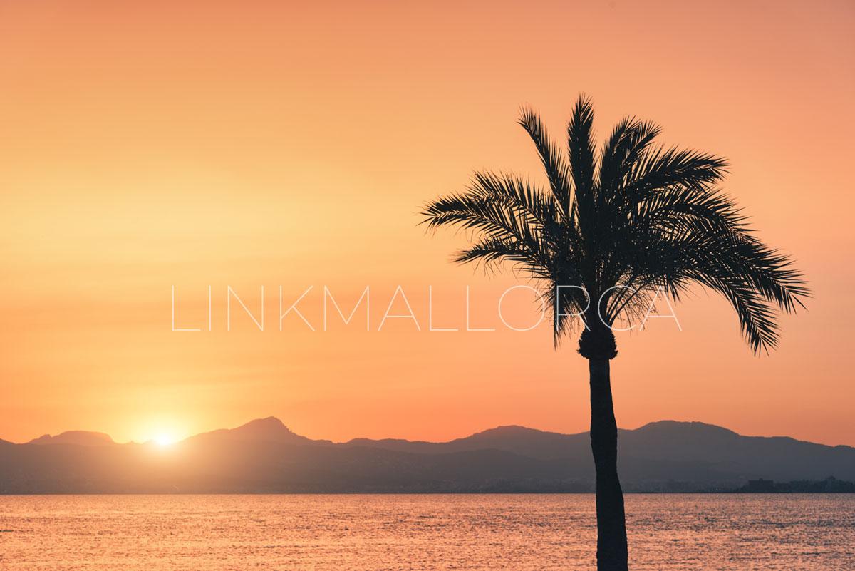 Los mejores lugares para contemplar el atardecer en Mallorca