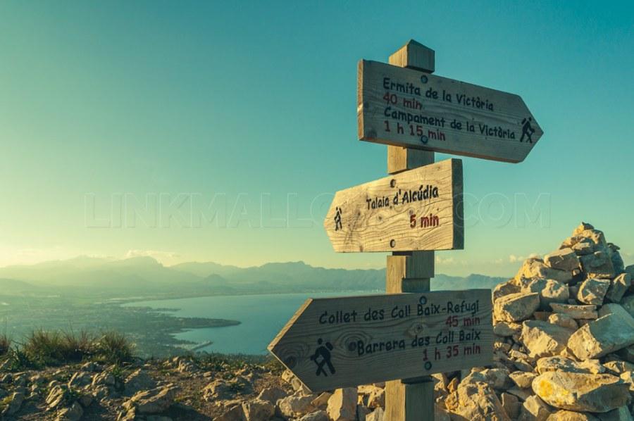 ruta-talaia-alcudia-mallorca_DSC0974