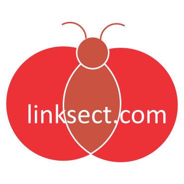linksect.com| Express~Explore~Experience