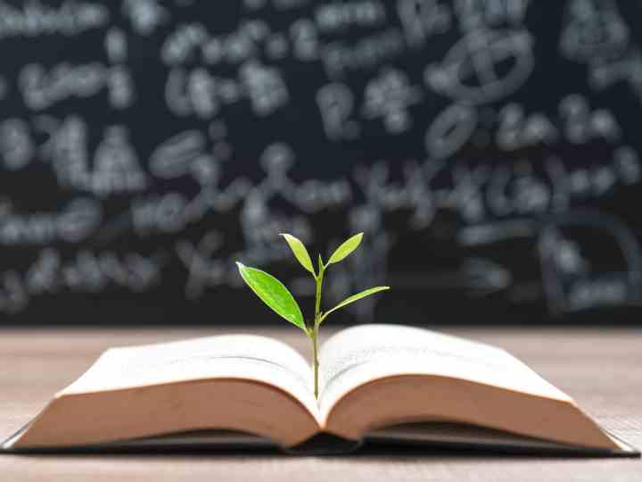 Top FREE Education Classified Sites List 2020