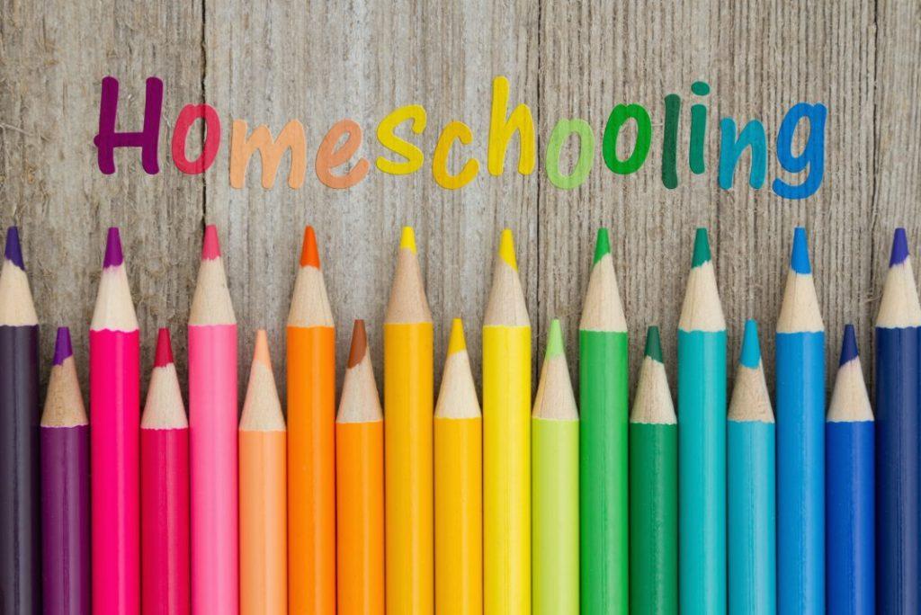 Why You Should Homeschool Young Children