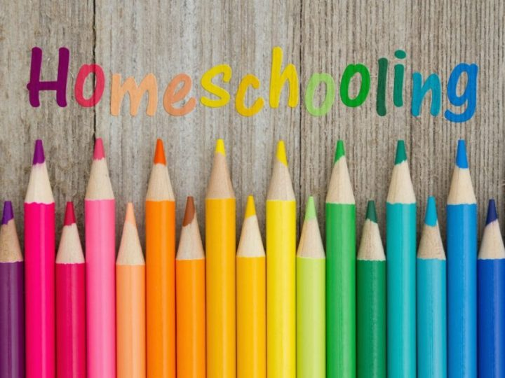 Why You Should Homeschool Young Children